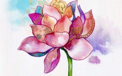 Lotus - Artemeditazione (Associazione Nidra)