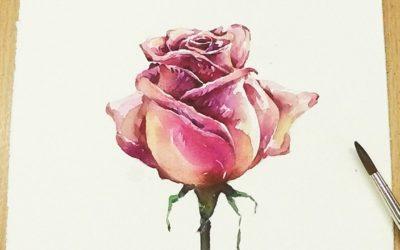 Rosa Mistica, Rosa Meditativa - Artemeditazione