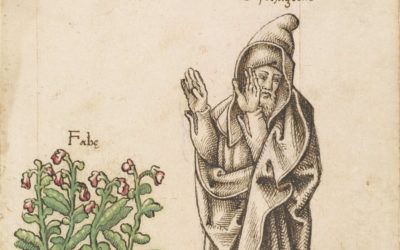 Alchimia di Fave, Samhain e dintorni (Associazione Nidra)